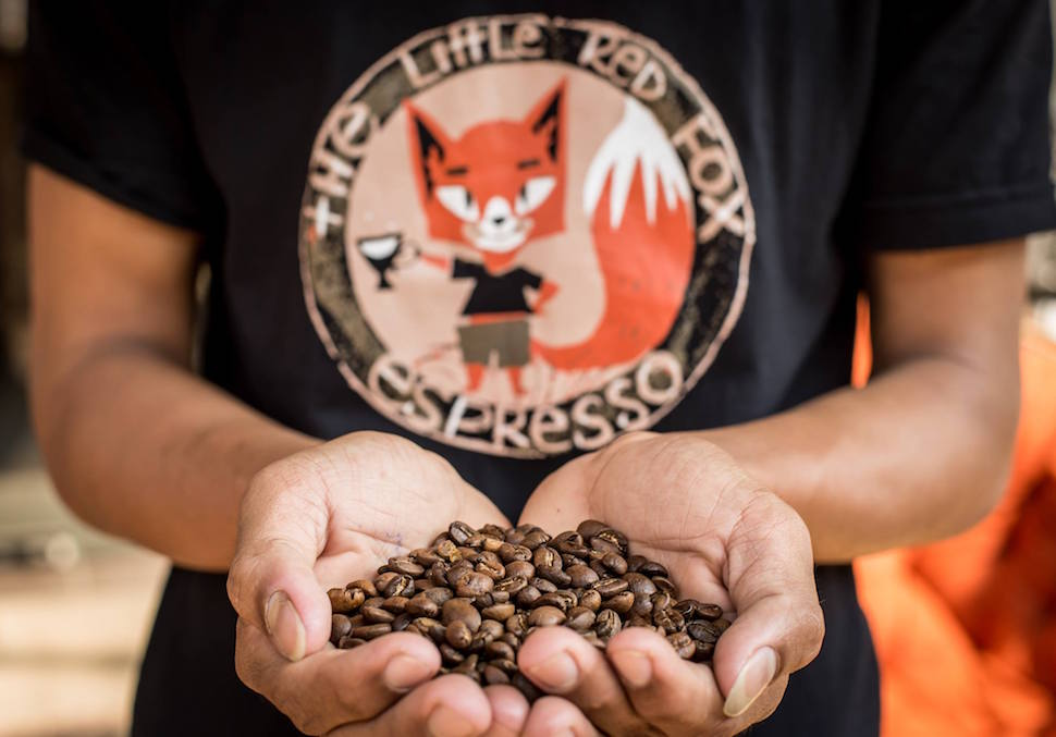 Cafe Siem Reap The Little Red Fox Espresso coffee beans